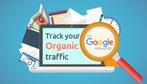 know some Changing Trends in SEO