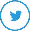 social media marketing development company- twitter