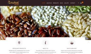 web design India-anubal food head