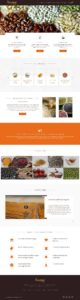 web development India-anubal food home